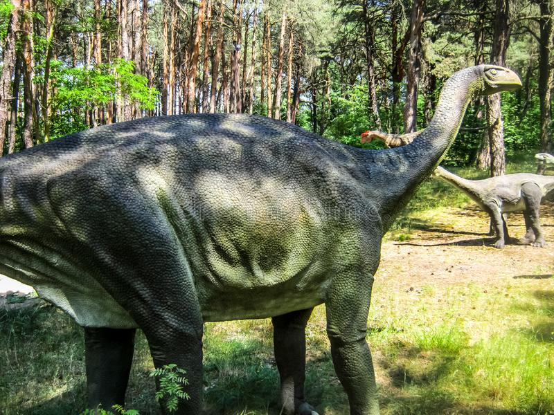 Vulcanodon蜥脚类动物在森林里,蜥脚类动物牧群  库存图片