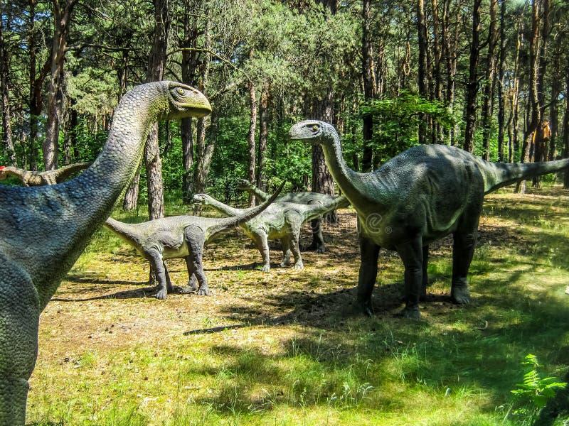 Vulcanodon蜥脚类动物在森林里,蜥脚类动物牧群  免版税库存照片