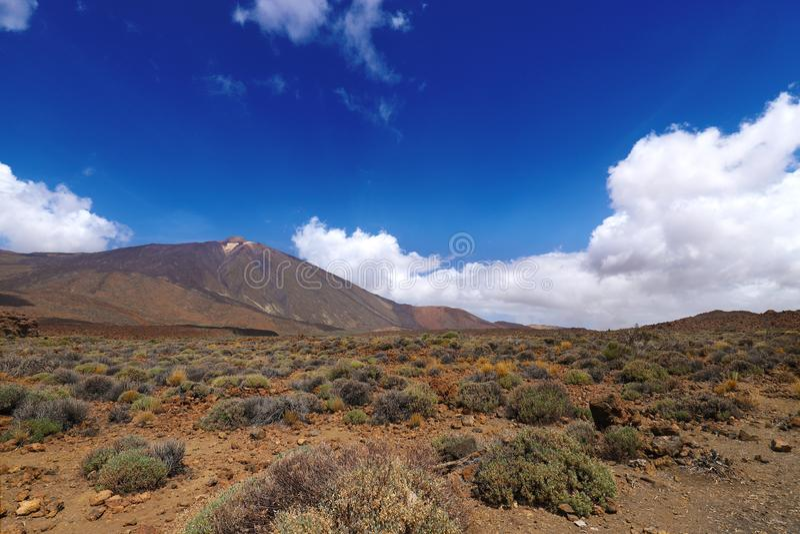 Vulkaanmonding Teide in Tenerife royalty-vrije stock foto