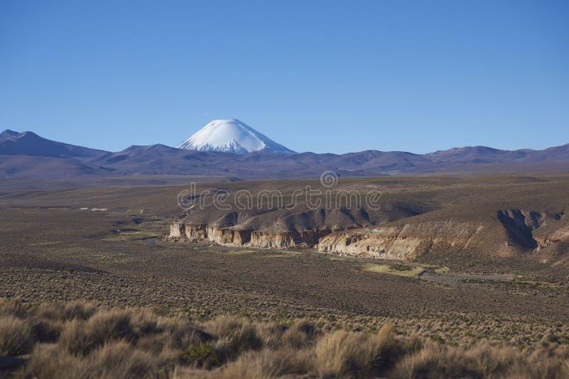 Vulkan auf dem Altiplano von Nord-Chile lizenzfreie stockbilder