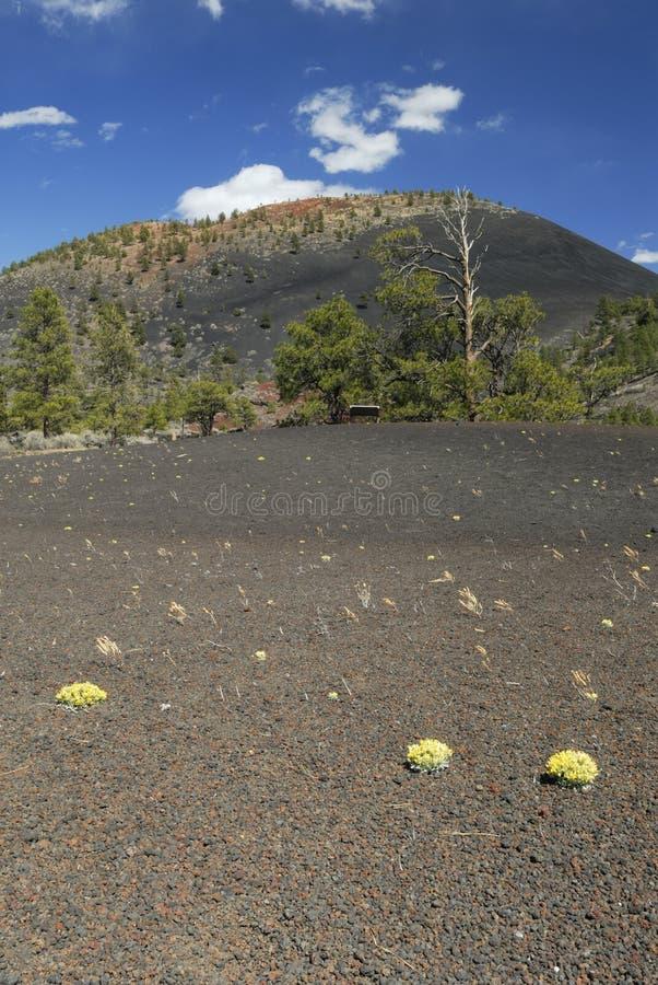 vulkan för arizona kratersolnedgång royaltyfria foton
