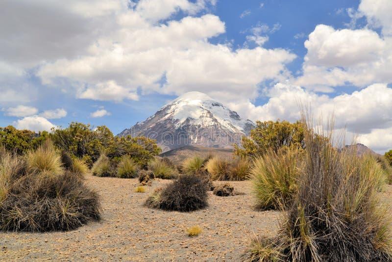 Vulkan i den Sajama nationalparken, Anderna, Bolivia fotografering för bildbyråer