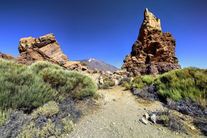Vulkanische Bergen van Tenerife stock afbeelding