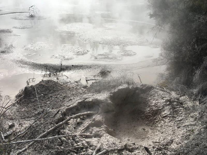 Vulkanische hete modder Rotorua Nieuw Zeeland stock afbeelding
