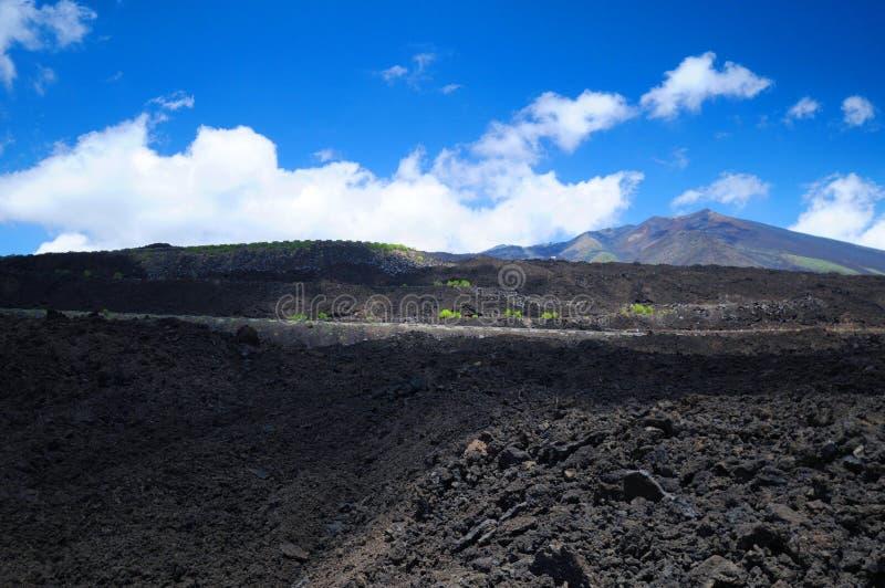 Vulkanisches Lavafeld lizenzfreie stockbilder