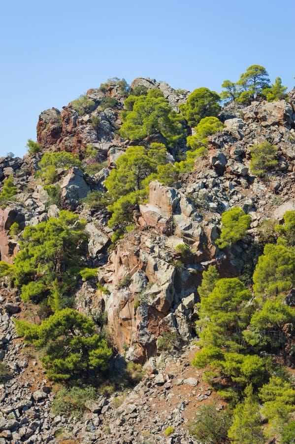 vulkaniskt berg royaltyfria foton
