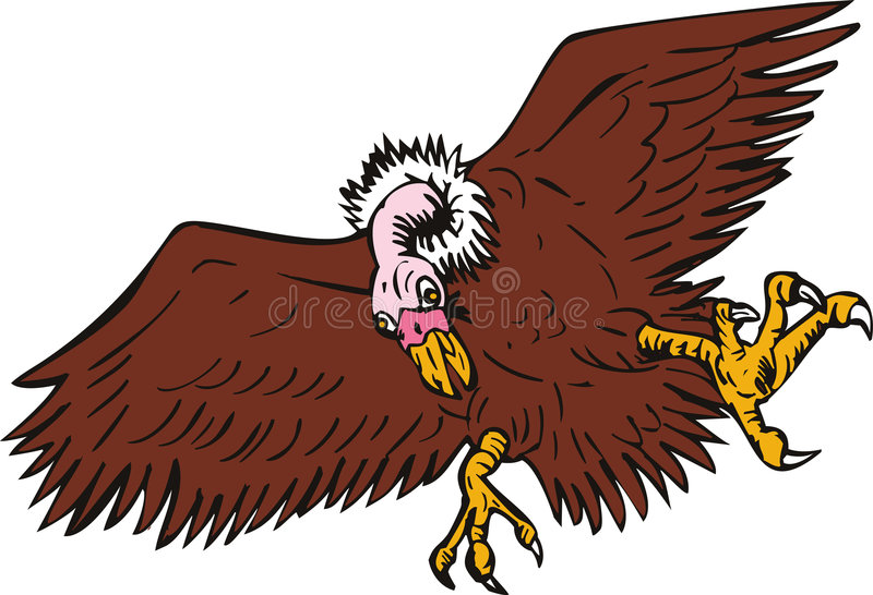 Download Vulture stock vector. Image of swooping, condor, bird - 7280370