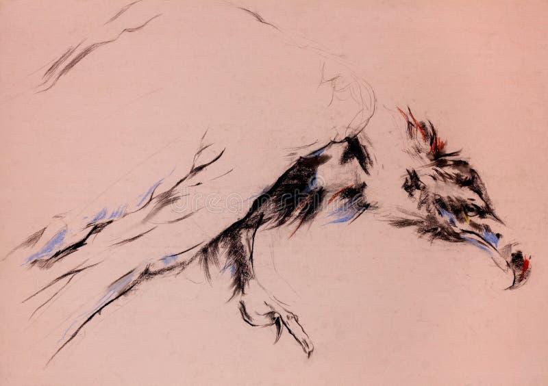 Download Vulture sketch stock illustration. Illustration of animal - 26544999