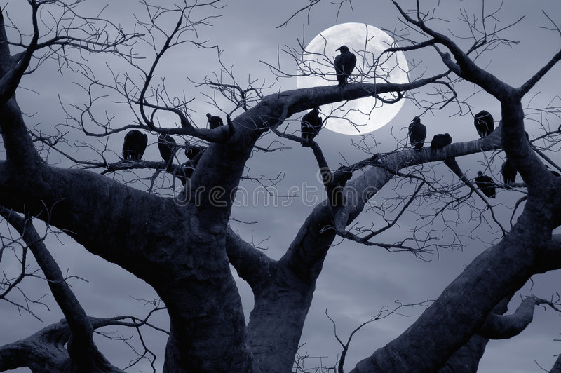 Vultures. In a scary and spooky halloween scene