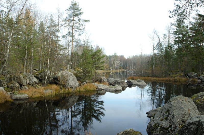 Vuoksarivier in het de herfstbos stock foto's