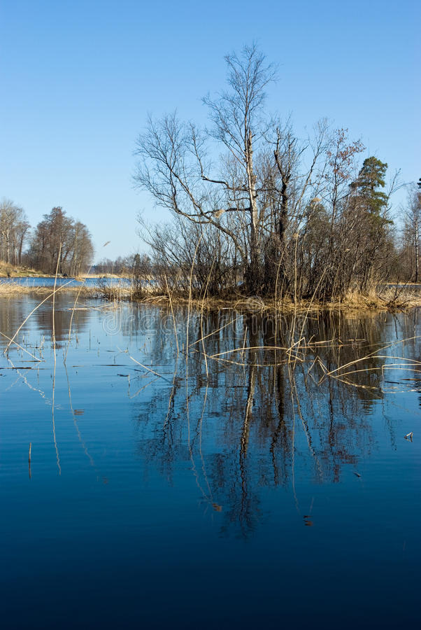 Free Vuoksi River Spring Landscape Stock Photos - 13119013