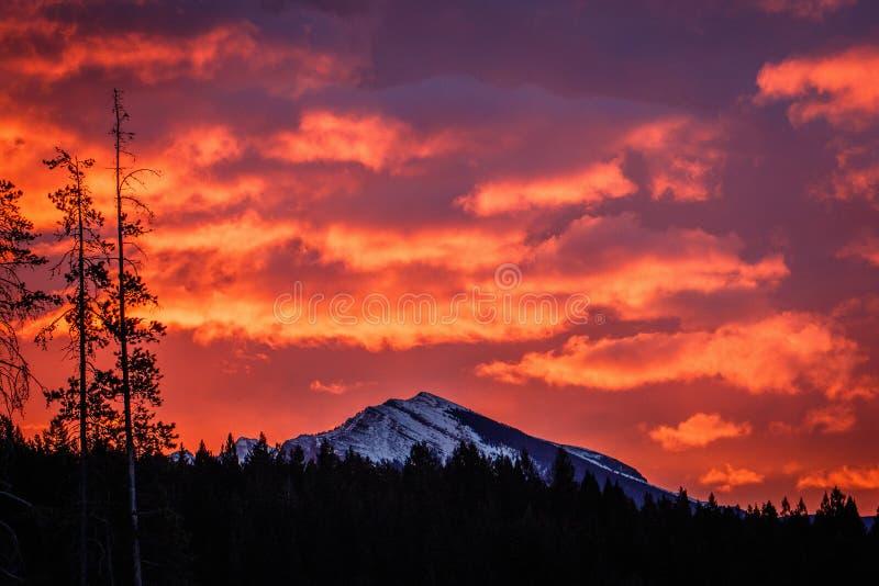 Vurige hemel boven Boogvallei, de provincie van Alberta, Canada royalty-vrije stock fotografie