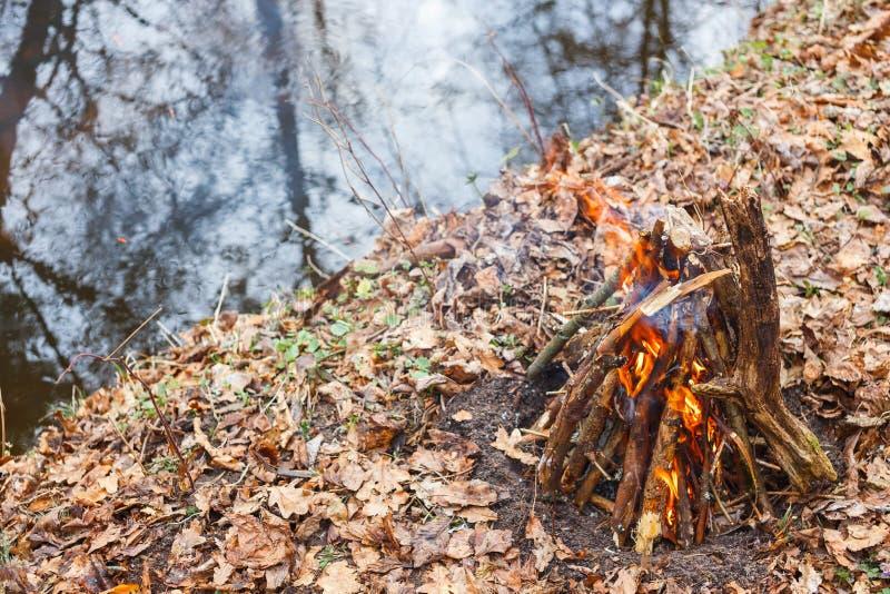 Vuur op de bank van een bosrivier in de avond royalty-vrije stock foto's