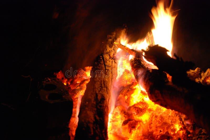 Vuur op seashore1 stock afbeelding
