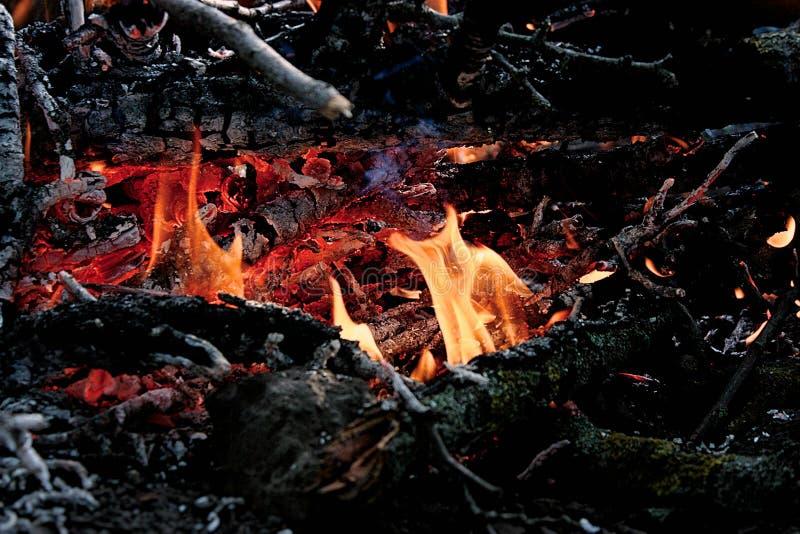 Vuur van het kamp royalty-vrije stock afbeeldingen