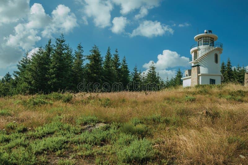 Vuurtoren bovenop heuvel door gras en bomen wordt behandeld die royalty-vrije stock foto's