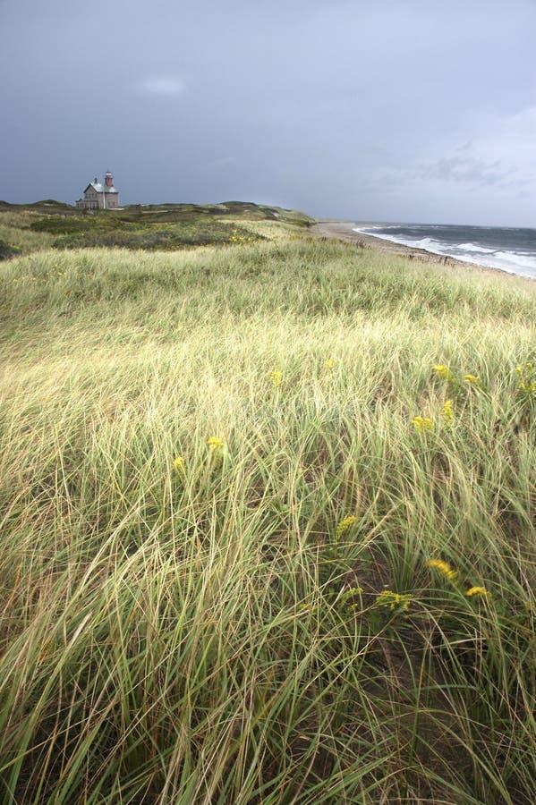 Vuurtoren en oceaan met grasrijk gebied in voorgrond royalty-vrije stock fotografie