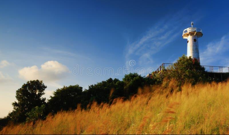 Vuurtoren met grasgebied dat bij zonsopgang blaast royalty-vrije stock afbeelding