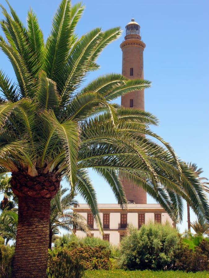 Vuurtoren van Maspalomas met palm vooraan Gran Canaria-eiland stock foto's