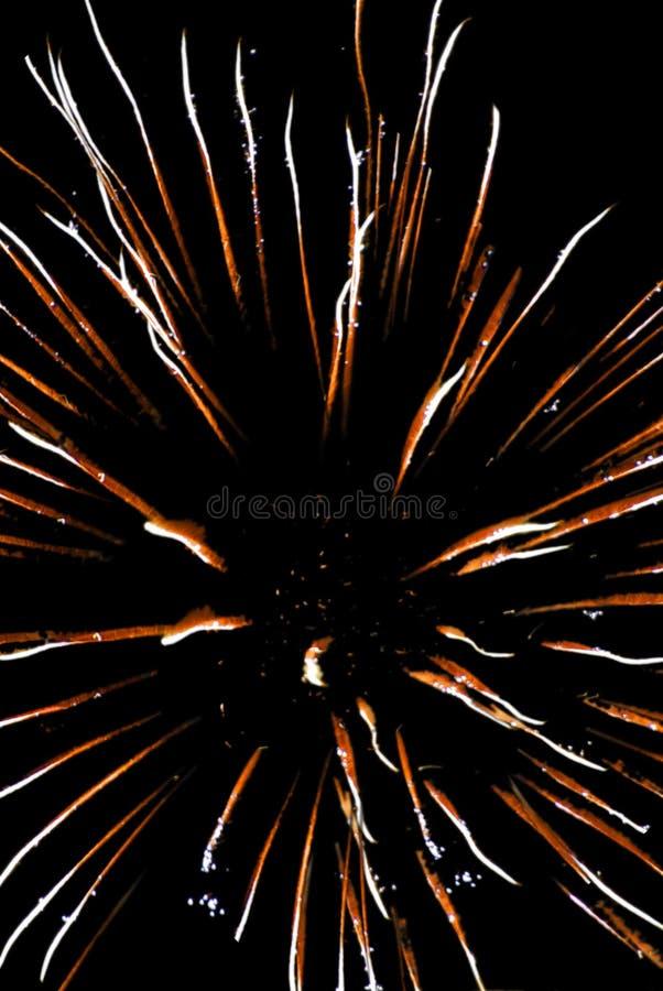 Vuurwerk 73 royalty-vrije stock afbeeldingen