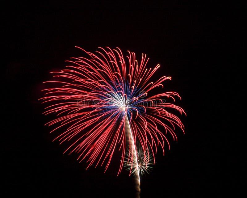 Vuurwerk 9 stock foto
