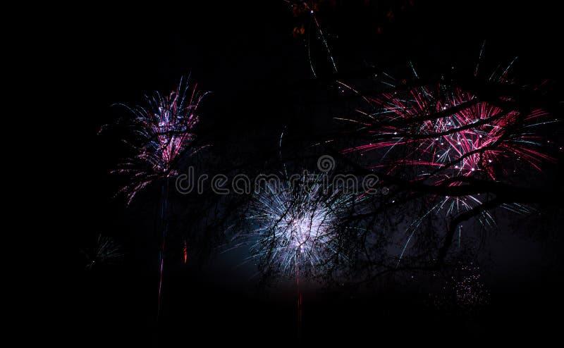 Vuurwerk bij nieuw jaar royalty-vrije stock afbeelding