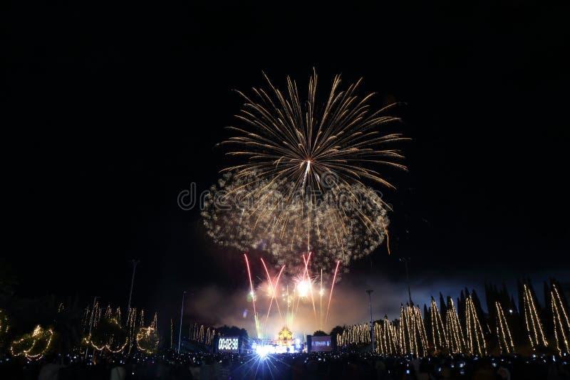Vuurwerk in de nieuwe verjaardag van de jaarvakantie stock foto's