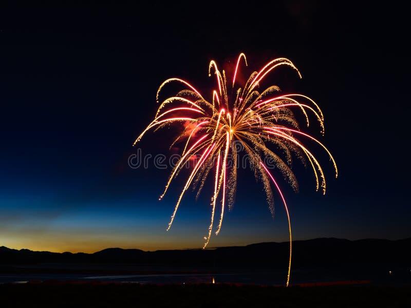 Vuurwerk in de vorm van een palm royalty-vrije stock foto