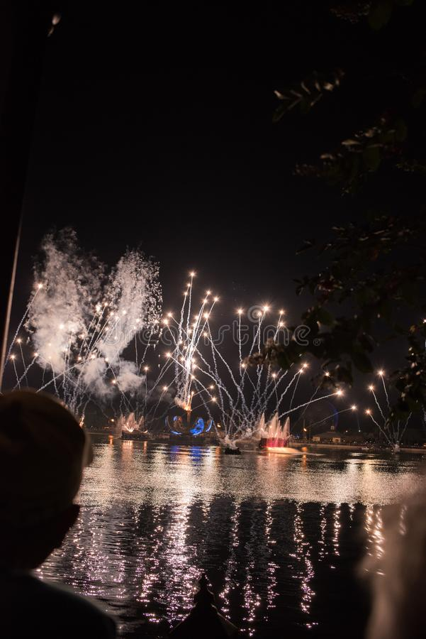 Vuurwerk in Epcot in Walt Disney World royalty-vrije stock foto