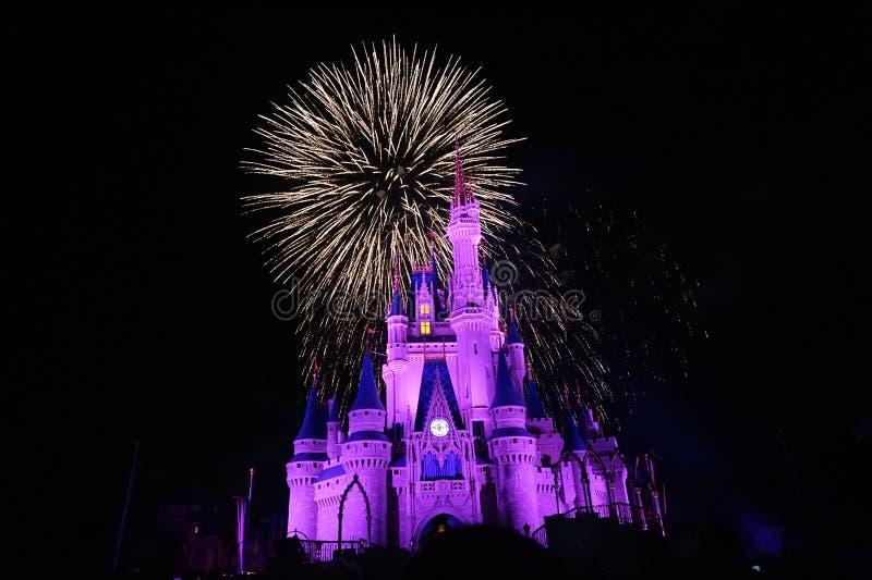 Vuurwerk in Magisch Koninkrijk royalty-vrije stock foto's