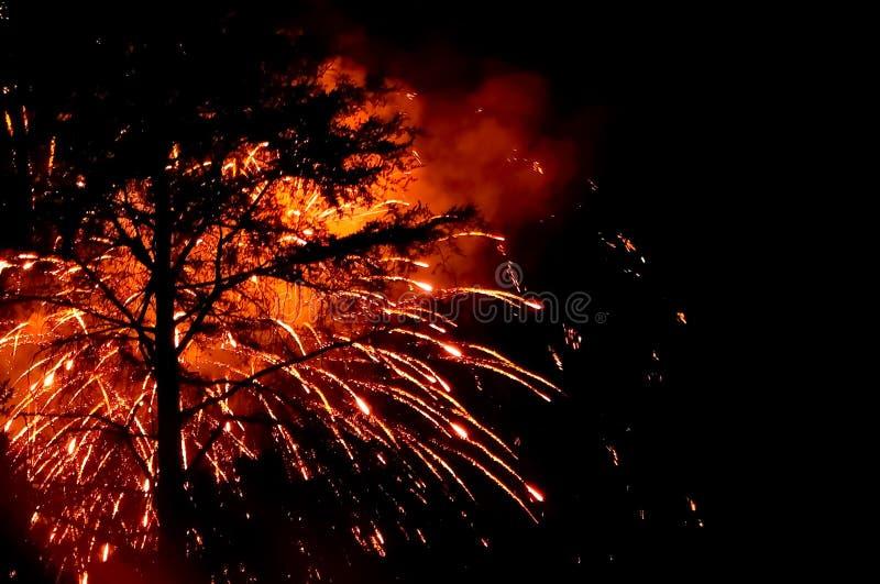 Vuurwerk op de Gelukkigste Plaats stock foto's