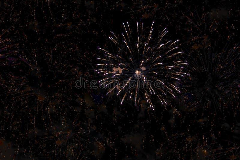 Vuurwerk op zwarte achtergrond voor vieringsontwerp De abstracte achtergrond van de vuurwerkvertoning royalty-vrije stock afbeeldingen