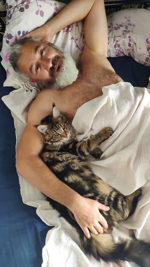 Vuxen brutal skäggig man som sover i morgonen med den Maine Coon kattungen, hem- komfortbegrepp, selektiv fokus arkivfoton