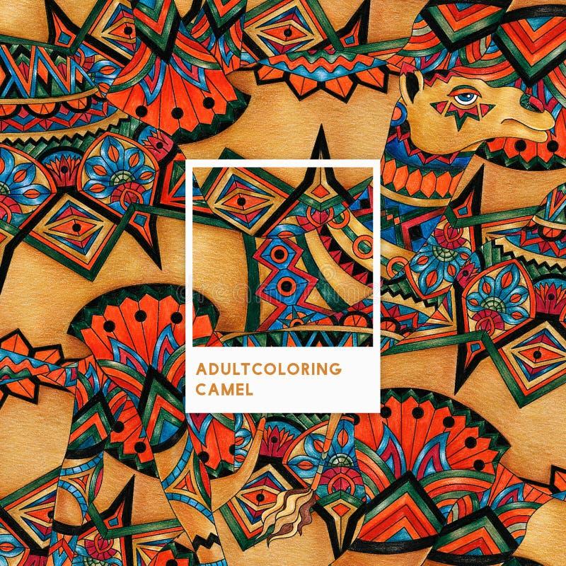 Vuxen färgläggningillustration för orange kamel vektor illustrationer