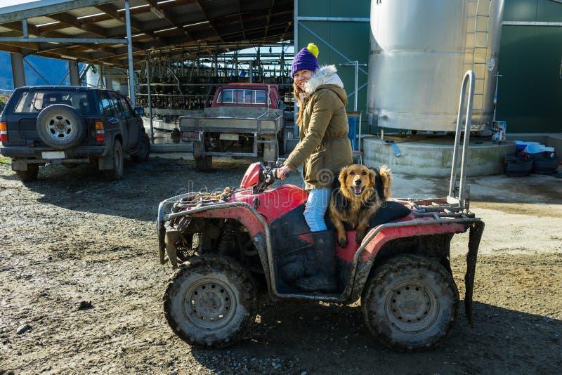 Vuxen kvinna som arbetar i en mejerilantgård med hennes hund arkivfoton