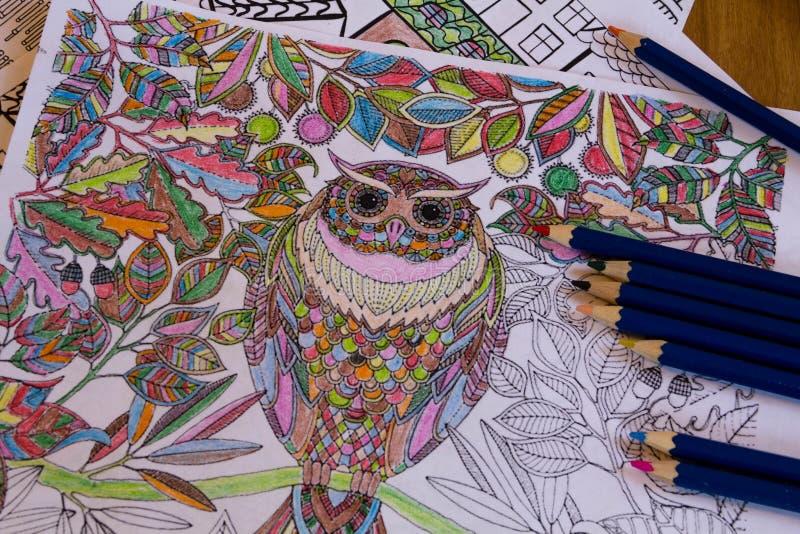 Vuxen människa som färgar böcker med blyertspennor, ny trend för spänningsavlösning, färga för mindfulnessbegreppsperson som är i royaltyfri foto