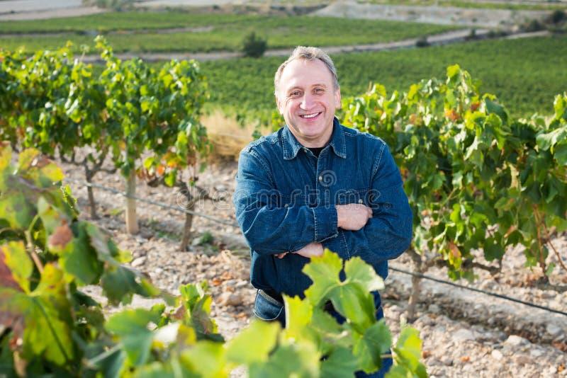 Vuxet glat mananseende på vingård royaltyfria bilder