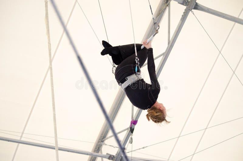 Vuxna kvinnliga hängningar på en flygatrapets på en inomhus idrottshall Kvinnan är en amatörmässig trapetskonstnär royaltyfria foton