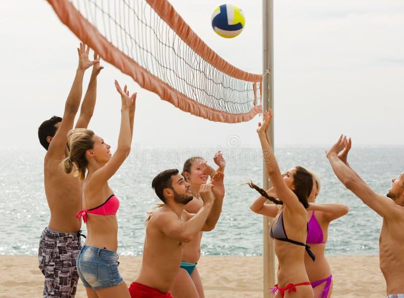 Vuxna människor som kastar bollen över netto och att skratta arkivfoton
