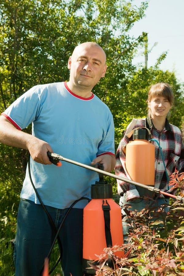 Folk som att bry sig för buskar arkivbild