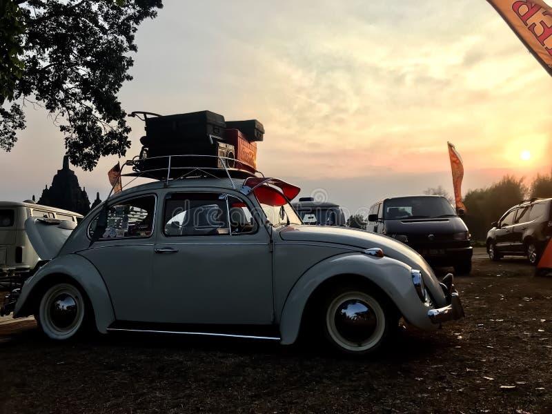 VW甲虫汽车 免版税库存照片