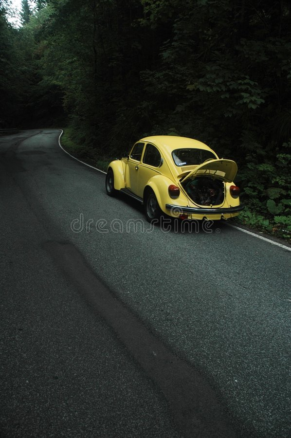 vw 1302 жука желтеет стоковые изображения rf