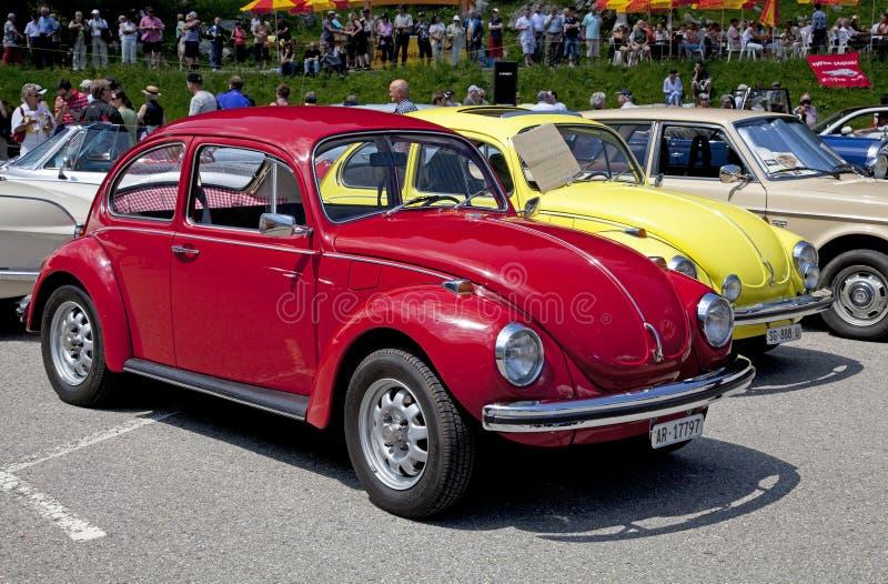 VW-Käfer stockbild