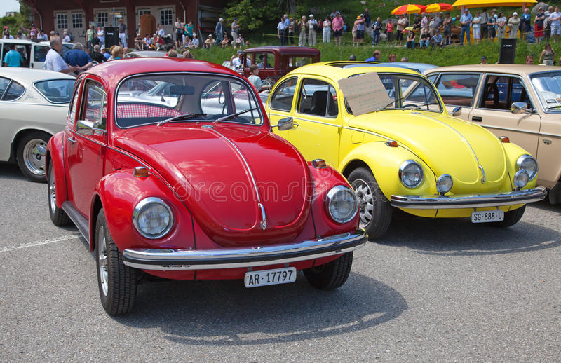 VW-Käfer stockfotografie