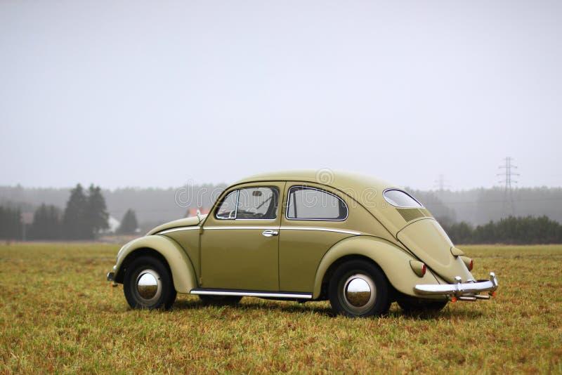 VW-Käfer 1957 stockbild