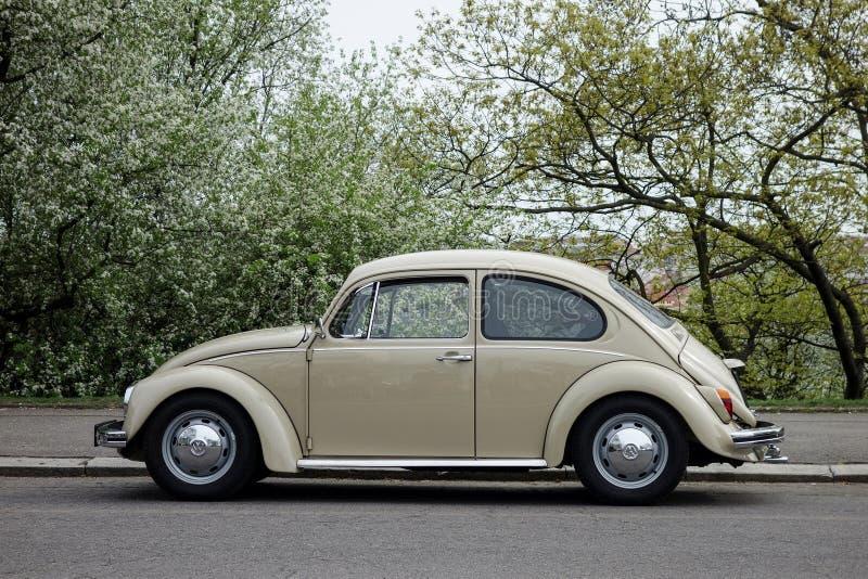 VW-Käferauto stockfotografie