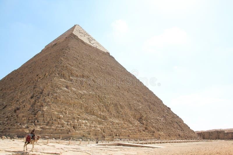 Vy över den stora pyramiden av Pharaoh Khafre med en rider på en kamel, gammal arkitektur i Egypten i Giza-komplexet arkivbild