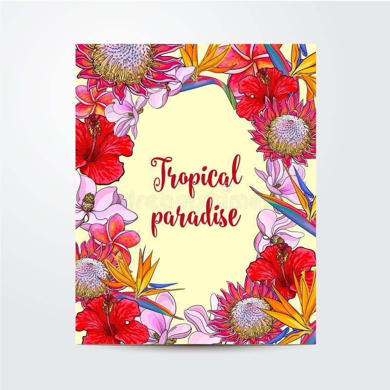 Vykort hälsningkort, banerdesign med exotiska tropiska blommor vektor illustrationer