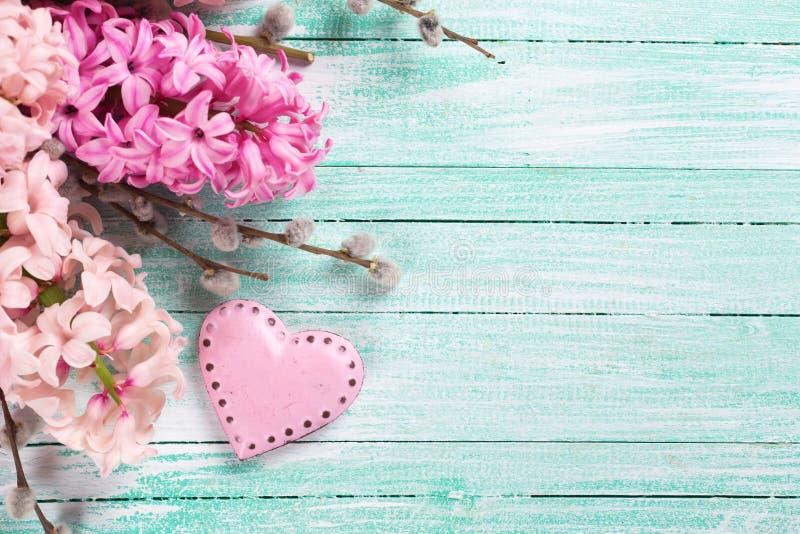 Vykort med nya rosa hyacinter och dekorativ hjärta på t arkivfoto