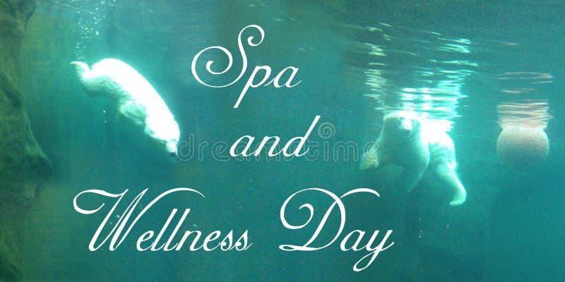 Vykortet med två ljusa isbjörnar simmar med en boll som är undervattens- i vatten för en turkos royaltyfri illustrationer